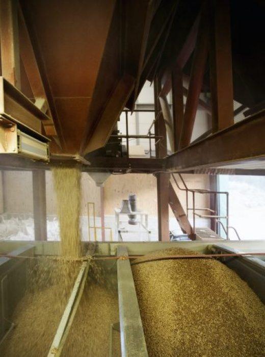 Biomasseverordnung